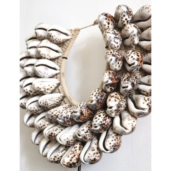 collier papou gros coquillages